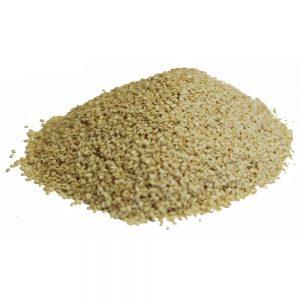 Graine sésame blanche